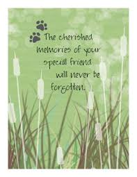 cherished memories pet sympathy card