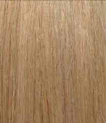 elite hair extensions herstyler elite hair extension instant clip 100