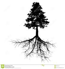 black tree with roots royalty free stock images image 28934149