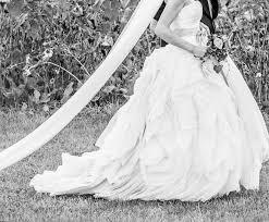 Wedding Dresses Vera Wang 2010 Vera Wang Wedding Dress Diana