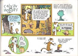 802 best calvin and hobbes images on comic strips hobbs