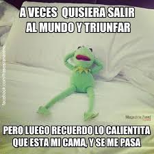 Memes Rana Rene - 17 geniales frases y memes de la rana ren礬 rana rene kermit