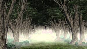 birch wood halloween background creepy forest backgrounds group 59