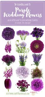 wedding flowers complete guide to purple wedding flowers purple flower names pics