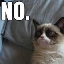 Angry Cat Memes - th id oip rfpztuja46bjjq0hewwpfaaaaa
