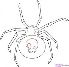 drawing black widow spider tattoos design images tattoomagz