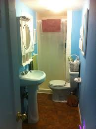 Bathroom Makeover Ideas On A Budget Bahtroom Blue Wall Color And Cool Mirror Cabinet Above Standing