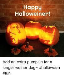 Weiner Dog Meme - 25 best memes about weiner dogs weiner dogs memes