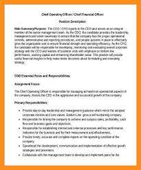 ceo job description sample templatexample unicloud pl