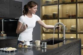 No Touch Kitchen Faucet by Https Secure Img2 Fg Wfcdn Com Im 01363645 Resiz
