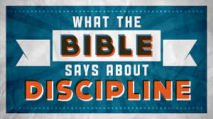 brain dead zombies what the bible says about discipline
