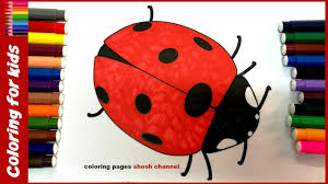 colours for kids how to color ladybug coloring page colored