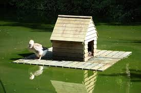 Woodworking Forum For Sale by Floating Duck House Woodworking Talk Woodworkers Forum