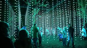enchanted forest of light tickets enchanted forest scotland 2016 1 youtube