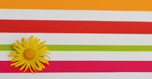 Flag Circle Free Images Petal Orange Line Spring Red Color Flag