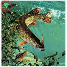 online buy wholesale fishing landscapes from china fishing