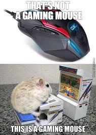 Mouse Memes - gaming mouse memes best collection of funny gaming mouse pictures