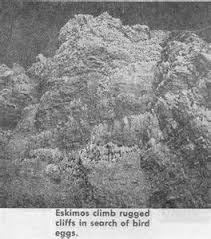 Rugged Cliff Synonym Definitions Of Oomiaks Synonyms Antonyms And Pronunciation