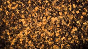 king size buckwheat hull mattress youtube
