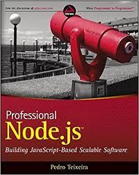 best node js books professional node js building javascript based scalable software