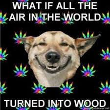 Stoned Dogs Meme - image 115598 stoner dog know your meme