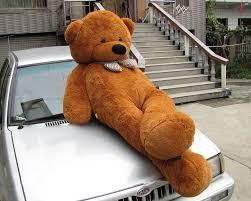 stuffed teddy bears walmart com never always sometimes by adi alsaid u2013 romance novels for the beach