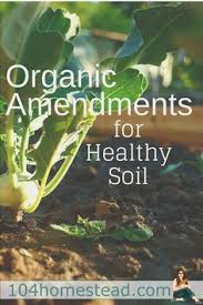 awesome soil amendments for your organic vegetable garden what