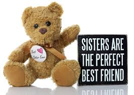 amazon com sister christmas gifts ideas perfect best sister