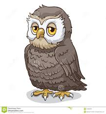 owl stock images image 33480894