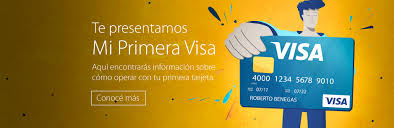 consulta de saldo visa vale social visa argentina