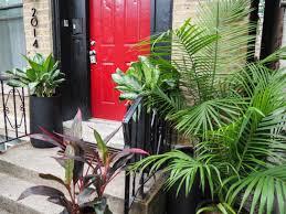 Jungle Home Decor by Home Decor U2013 Bucktown Revival