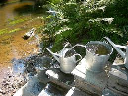 metal watering cans uk the best cans