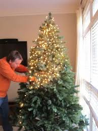 How To Decorate A Real Christmas Tree Best Way To Put Lights On A Real Christmas Tree Rainforest