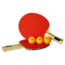table tennis and ping pong ping pong table tennis 2 player set target