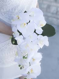 white orchids touch white real touch orchids bouquet