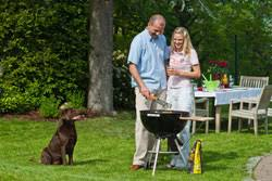 Cottages That Allow Dogs by Superior Dogs Welcome Holiday Cottages Log Cabins In The Uk
