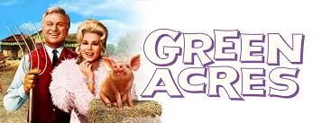 watch an old fashioned thanksgiving online free watch green acres online at hulu