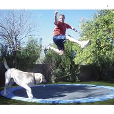 in ground trampolines trampolines family leisure
