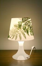 Flower Table Lamp Free Images Table Wood White Leaf Flower Glass Vase Green