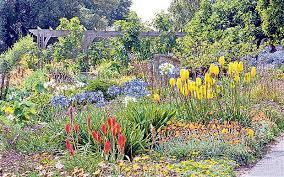 Ventnor Botanic Gardens The Future Looks Bright For Ventnor Botanic Garden Telegraph