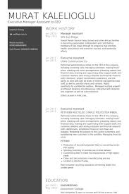 manager assistant resume samples visualcv resume samples database