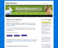 washington rabbit breeders usa rabbit breeders