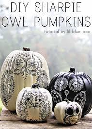 pumpkin black and white pumpkin 50 no carve pumpkin decorating ideas owl pumpkin owl and tutorials