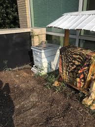 backyard guest house kits backyard retreat landscaping for small