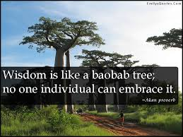 wisdom is like a baobab tree no one individual can embrace it