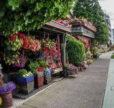 flower house flower house alki album on imgur