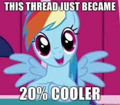 20 Cooler Meme - dedication sunshine colored ductape