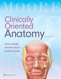 Anatomy And Physiology Made Incredibly Easy Pdf Medical Books Nz Ltd Medical Books Nz