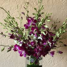 flower delivery wichita ks laurie s house of flowers dendrobium orchids flower