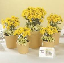 Cheap Easy Wedding Centerpieces by Best 25 Daisy Wedding Centerpieces Ideas On Pinterest Daisy